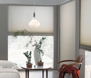 cellular shades in Chicago space