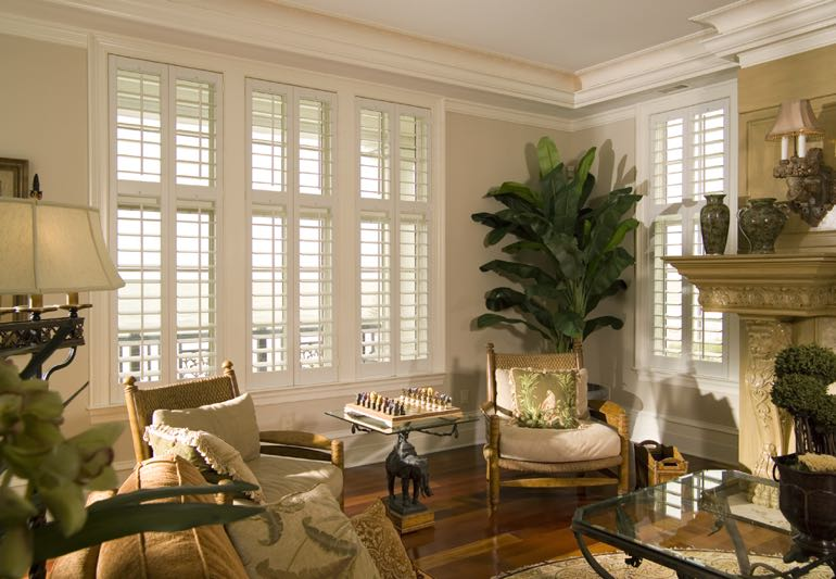 interior designer window treatment program