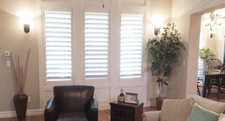 Chicago parlor white shutters